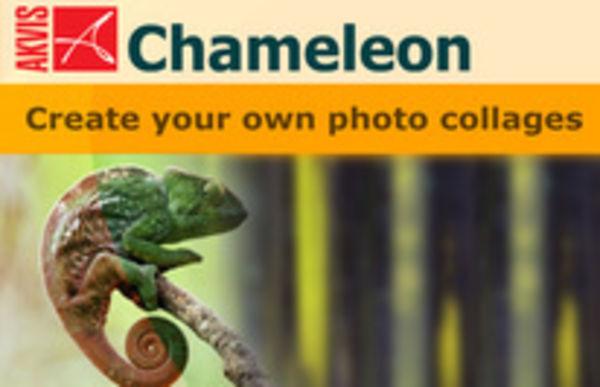 Вышла новая версия программы для создания коллажей AKVIS Chameleon 6.0.