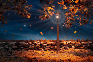 Autumn Flakes  © Carl Warner