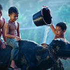 Shower time © Rarindra Prakarsa