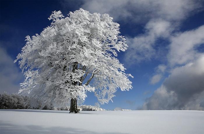 Цвет белого снега - gpedia your encyclopedia
