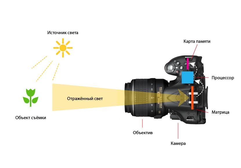Как устроен фотоаппарат и